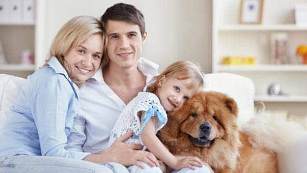 Wills & Trusts dog-young-family Direct Wills Twickenham